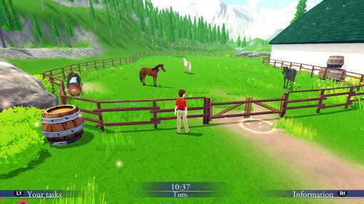 Моя конюшня: жизнь с лошадьми